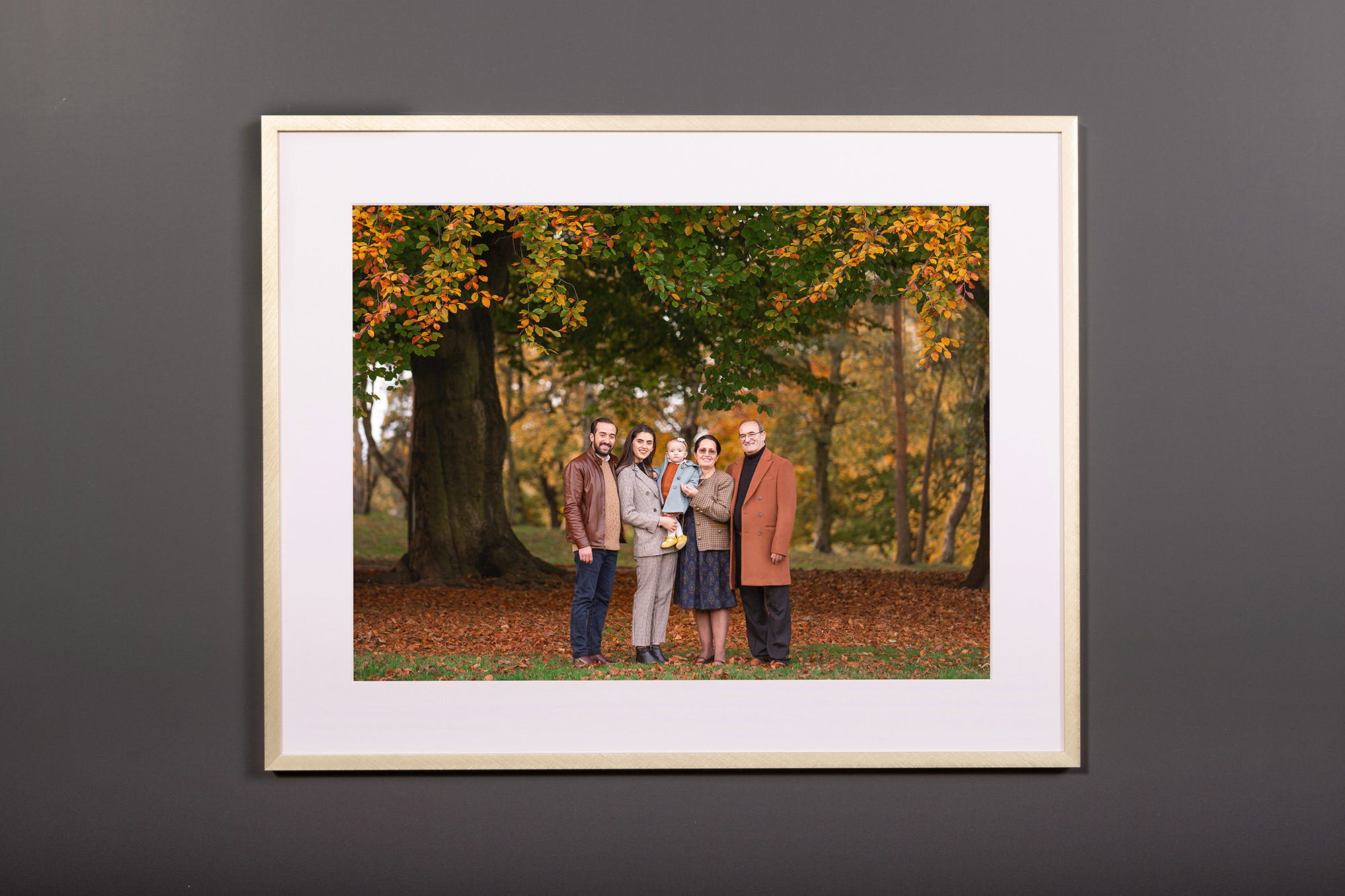 wall art - metal frame gold 2